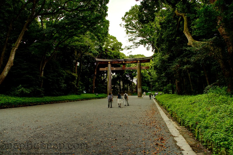 Grounds of Meiji Jingu Shrine