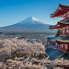 Chureito Pagoda And Fuji At Full Bloom