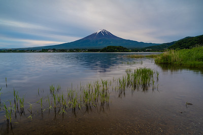 Cloudy Kawaguchiko Morning