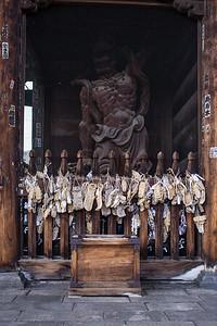 Nagano and snow monkeys