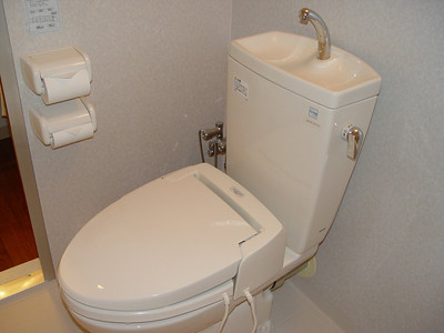 This was a first, the sink/toilet combo.