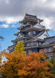 Autumn Okayama Castle