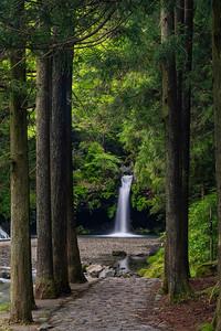 Path To Jimba Falls