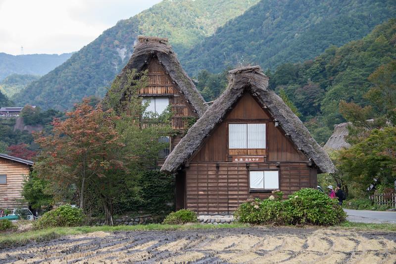 Shirikawa_go-8838