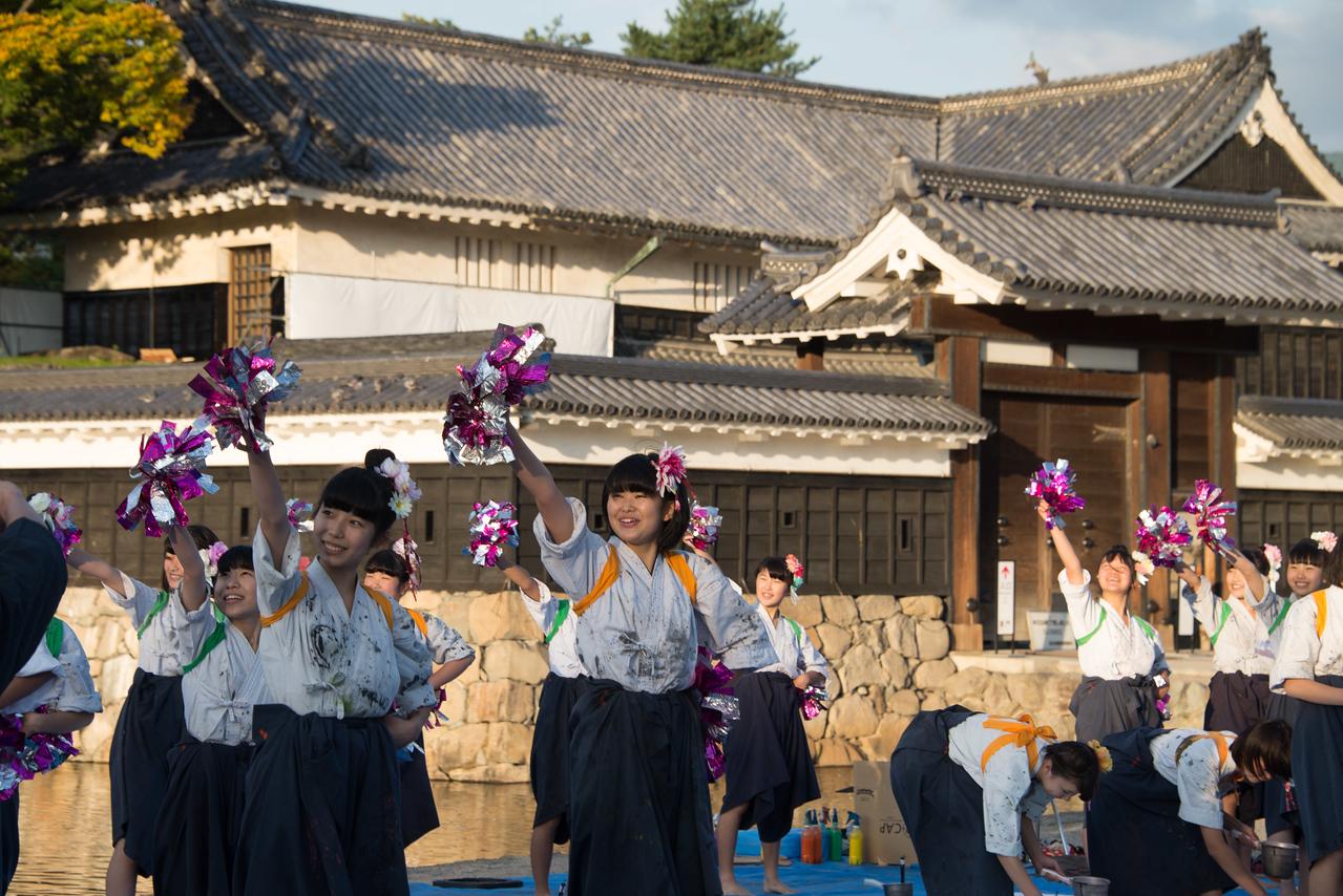 Matsumoto Castle-8271