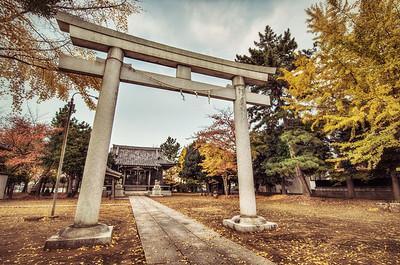 The Autumn Torii