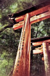 Fushimi Inari Torii Gate