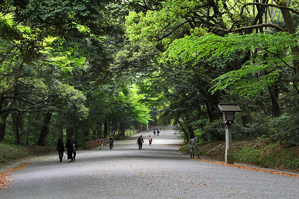 Entering the grounds of Meiji Shrine