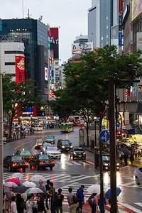 Shibuja