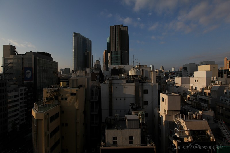 A view of the skyline from the Ginza district.