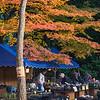Autumn Market at Koshikawa Korakuen
