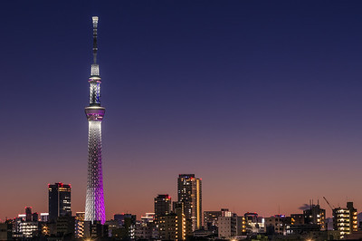 Nightfall Over The Skytree
