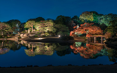 Blue Hour Illumination at Rikugien in Autumn