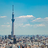 Skytree From Bunkyo Civic Center