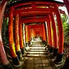 Fushimi Inari Taisha Shrine Torii Gates 14