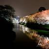 Sakura blossoms at Chidorigafuchi at night, Tokyo, JP