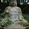 Forrest Buddha, Hiei-zan, Shiga-ken, Japan