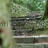 Stone Stairway, Hiei-zan, Shiga-ken, Japan