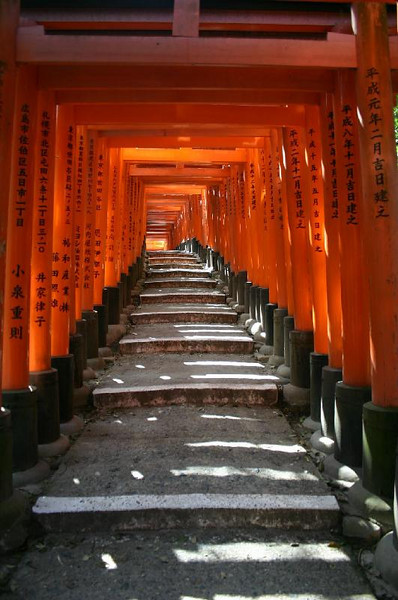 Torii gates at the Fushimi-inari Taisha shrine in eastern Kyoto.