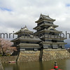 Matsumoto Castle from the Bridge, Matsumoto, Nagano-ken, Japan