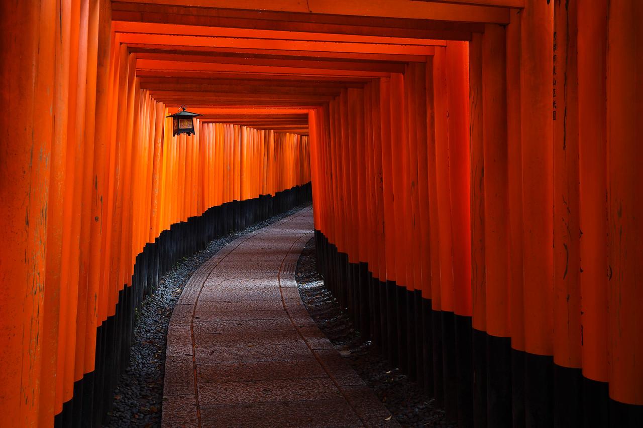 The Magnificent Torii Gates at Fushimi Inari Shrine (Kyoto, Japan)