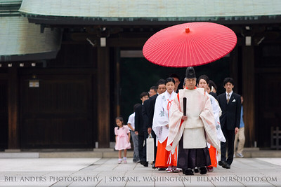 Umbrella Procession  Maiji Shrine, Harakuku, Tokyo, Japan.