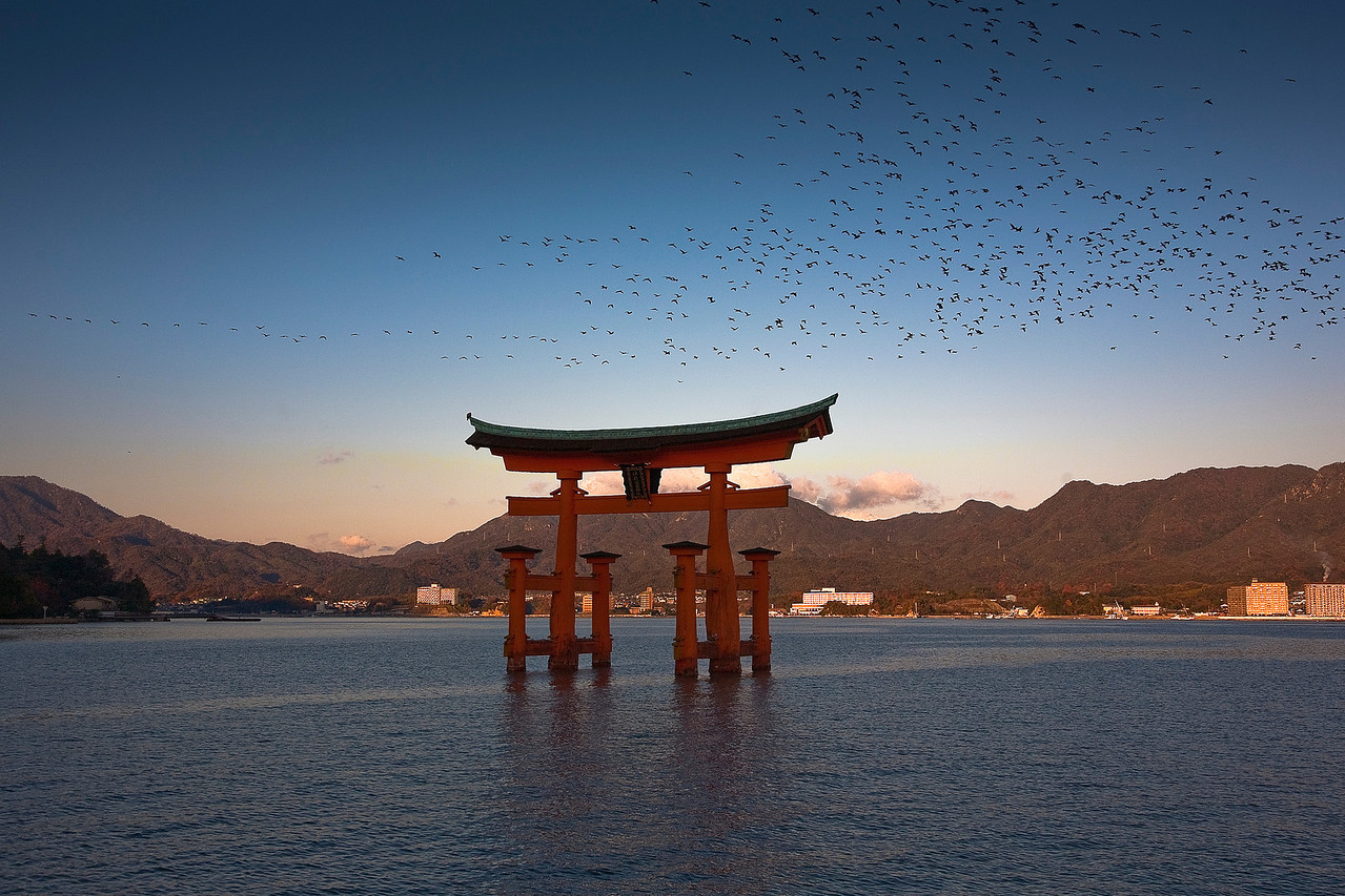A lucky shot of Miyajima. Lucky because of the birds, but also because my camera began malfunctioning around this time. It turns out the contacts between the lens and the camera were dirty, although I didn't know this at the time. As a result I was unable to zoom for the rest of the trip, and all pictures had to be taken at 24mm.