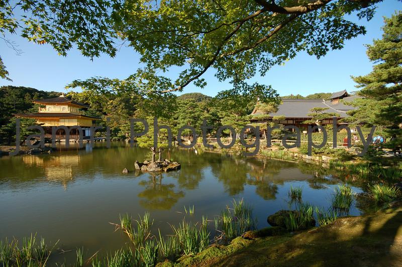 Kinkaku-ji (The Golden Pavilion) looking back, Kyoto, Japan