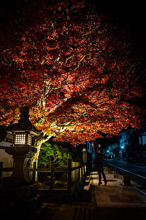 A night out in Koyasan (Mount Koya, Japan)