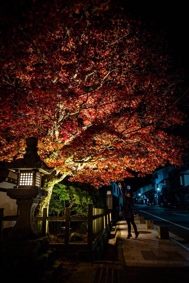 A night out in Koyasan (Mount Koya, Japan)