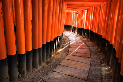 Path to Enlightenment  Fushimi Inari, Kyoto, Japan.