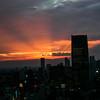 Tokyo Sunset 6