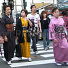 Kyoto is one the few places in Japan where it is common to see ladies wearing Kimono, Kyoto, Japan