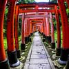 Fushimi Inari Taisha Shrine Torii Gates 13