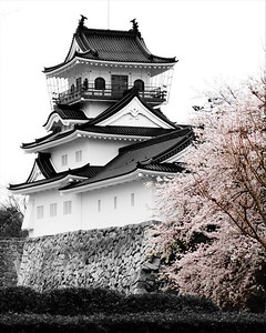 Castle Park Toyama Japan