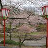 Outside of Kenrokuen Garden in Kanazawa - Ishikawa Prefecture