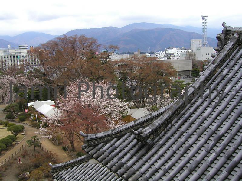 The Castle Roof, Matsumoto, Nagano-ken, Japan