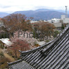 The Castle Roof, Matsumoto, Nagano-ken, Japan
