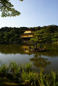 Golden Palace - Kyoto, Japan