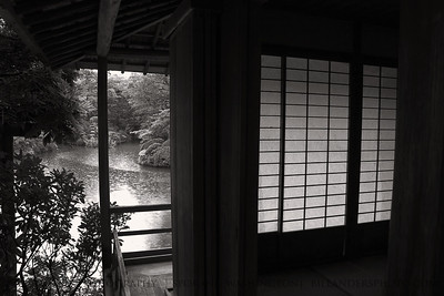 Shoji on a rainy day