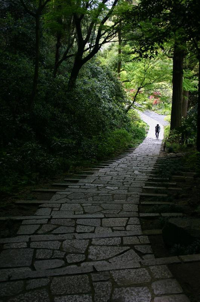 Entrance path at the Zuisen-ji temple in Kamakura.
