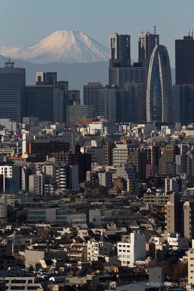 mount fuji and shinjuku, tokyo / 富士山と新宿, 東京