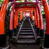 Fushimi Inari Taisha Shrine Torii Gates 3