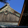 Roof top at Nijo-jo (Tokugawa's Kyoto Castle), Kyoto, Japan