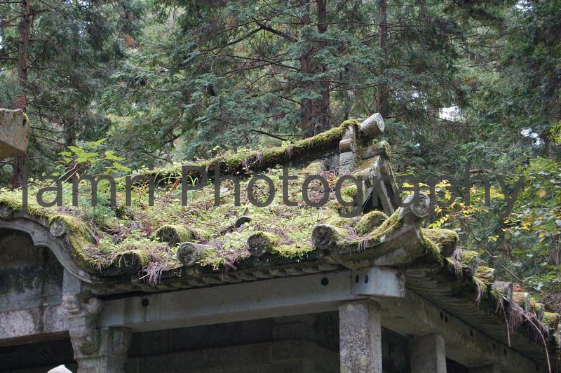 Overgrown Roof, Koya-san, Wakayama-ken, Japan