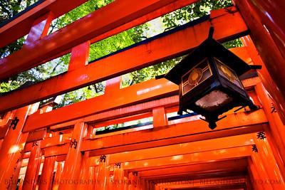 Tori Lantern  Fushimi Inari, Kyoto, Japan.
