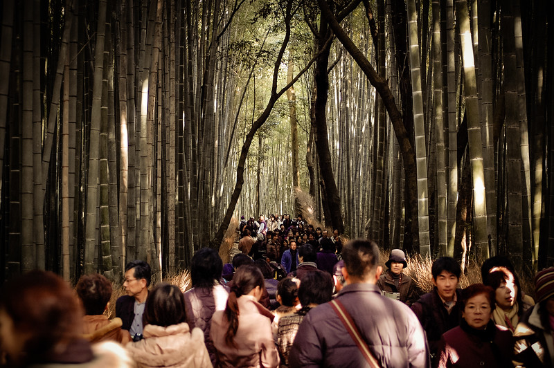 Crowds in Arashiyama forest