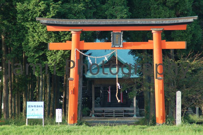 Shinto Shrine, Omi-Imazu, Shiga-ken, Japan