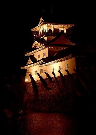 Toyama Castle Park at night