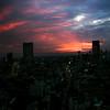 Tokyo Sunset 7